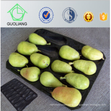 China Factory Directly Sell Vacuum Forming Cushioning Alveolar Fruit Plastic Trays Packaging in Standard Food Safety Grade